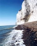 Picture of the white cliffs of dover