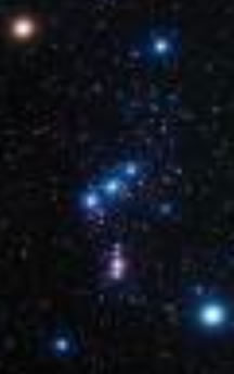 Orion principle stars