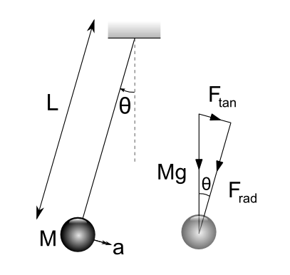 Diagram of simple pendulum