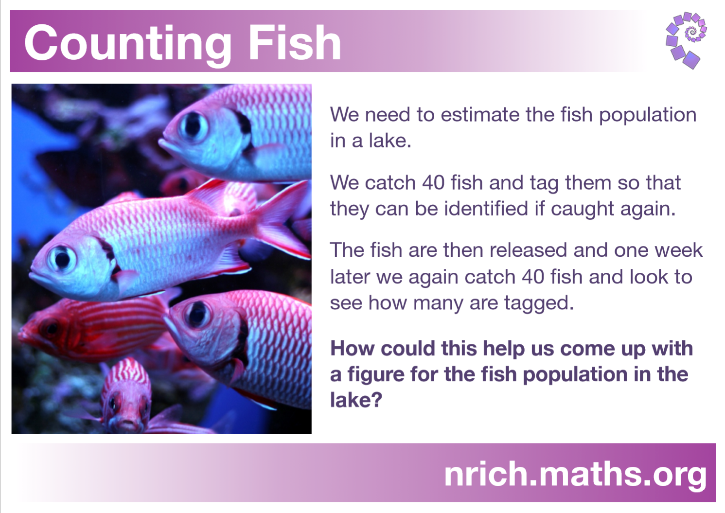 Counting Fish Poster : nrich.maths.org