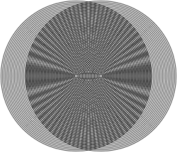 Moire patterning of two sets of concentric circles